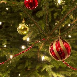 christmas-tree1-1024x731